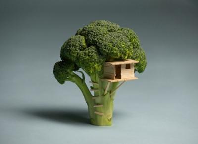 vegetable-house